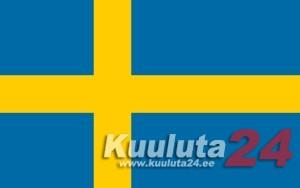Raamatupidamine Rootsis, rootsi firmade loomine, Eesti firmade reg maksuametis (F Skatt), palgateenus, audiitori teenus ja juriidiline abi Rootsis, ametiühingutega liitumine (Byggnads), ID 06 tellimine, isikukoodide taotlemine Rootsis